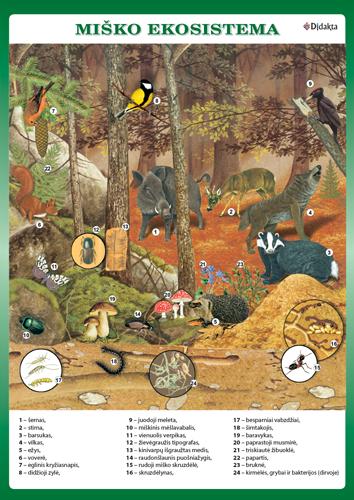 prekybos ekosistema